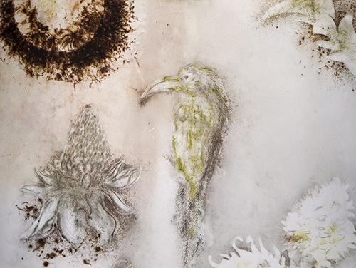 《ブラジル花鳥図》(部分)2013年、火薬・和紙、作家蔵(参考図版)