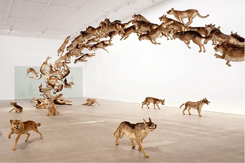 《壁撞き》2006年、狼のレプリカ(99体)・ガラス、 サイズ可変、ドイツ銀行によるコミッション・ワーク