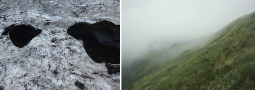 画像左:C.09(CAMPより)/2015年/インクジェット・プリント、画像右:C.43(CAMPより)/2015年/インクジェット・プリント