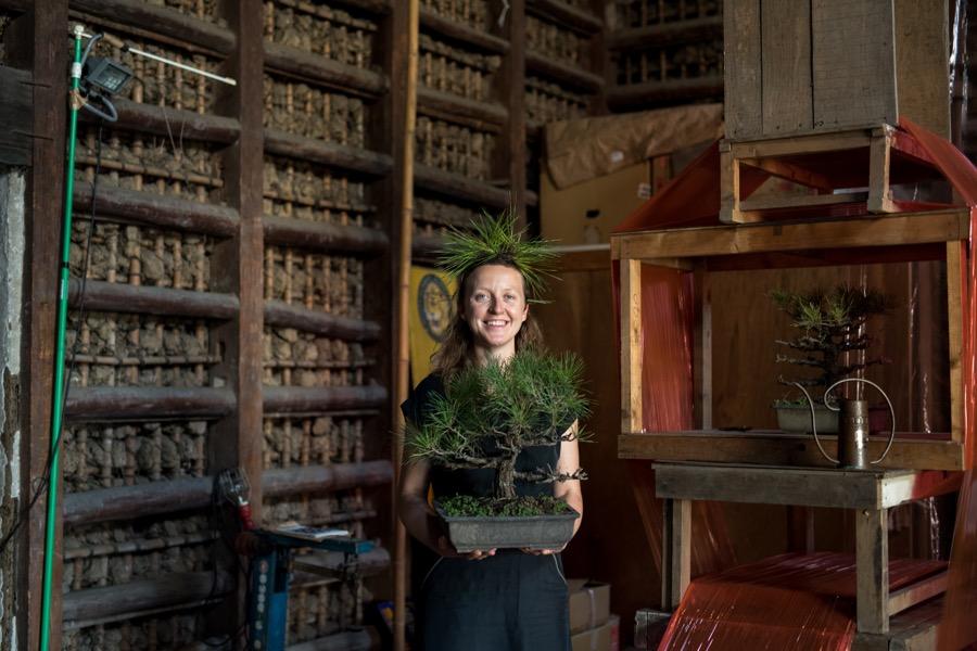 ラトビアからの参加アーティスト、アスナテ・ボッチキスさんは日本とラトビアの共通点として松の木に着目