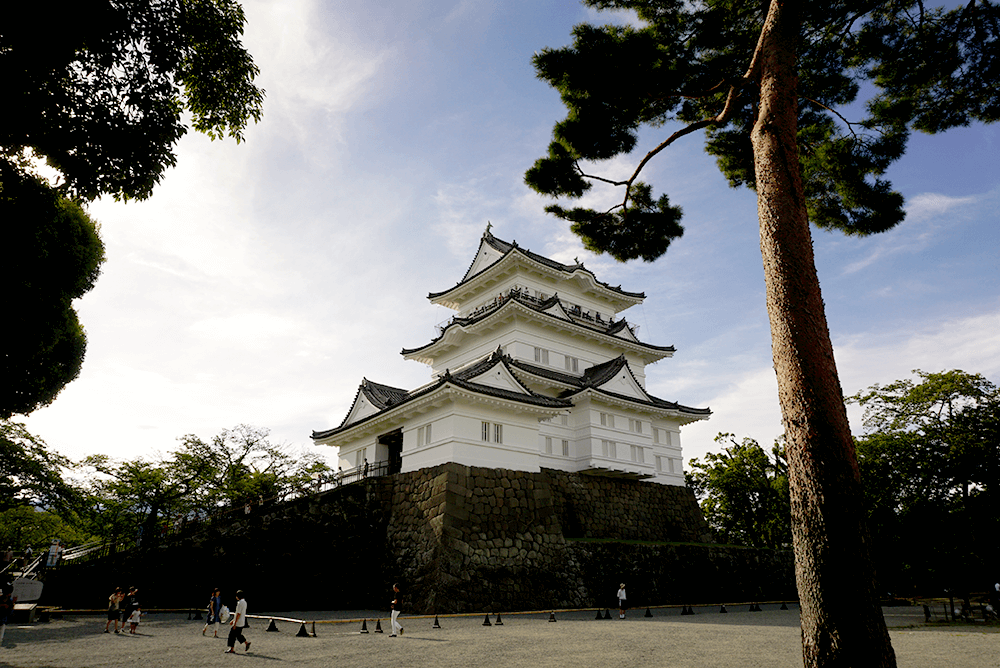 Odawara Castle, renovated last year. You can enjoy walking around the castle ruin park as well as the whole town!