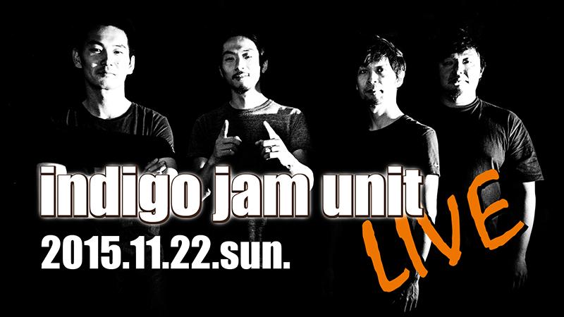 indigo jam unit LIVE