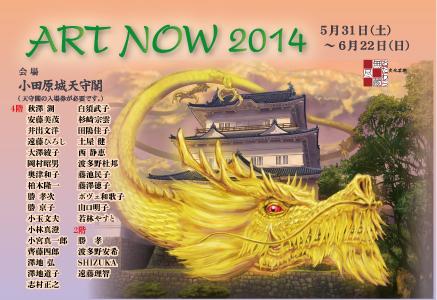 Art Now 2014