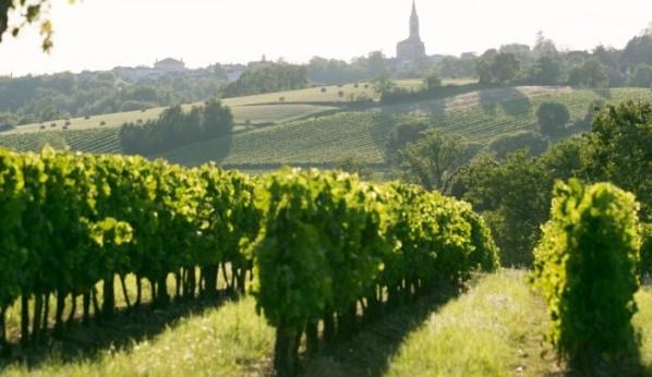 ワインセミナー「ボルドー地方のワイン」