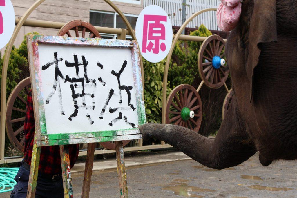 ゆめ花 絵画展