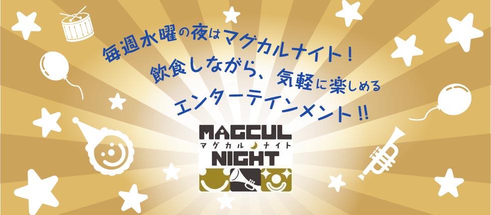 マグカルレポート(マグカルナイト編)