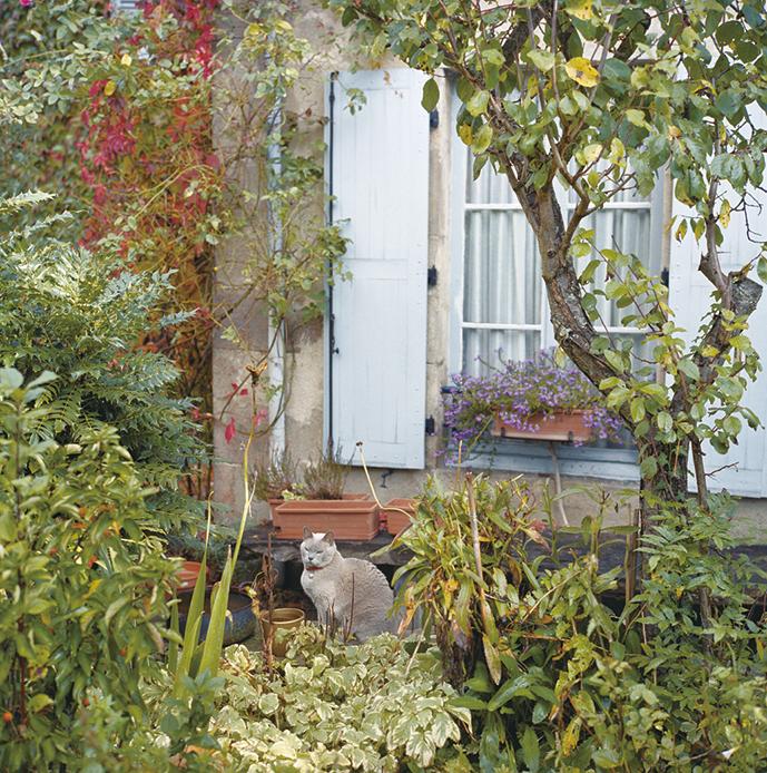 大塚日出樹写真展 マ・カシェットの庭 -庭はなぜ要るのか