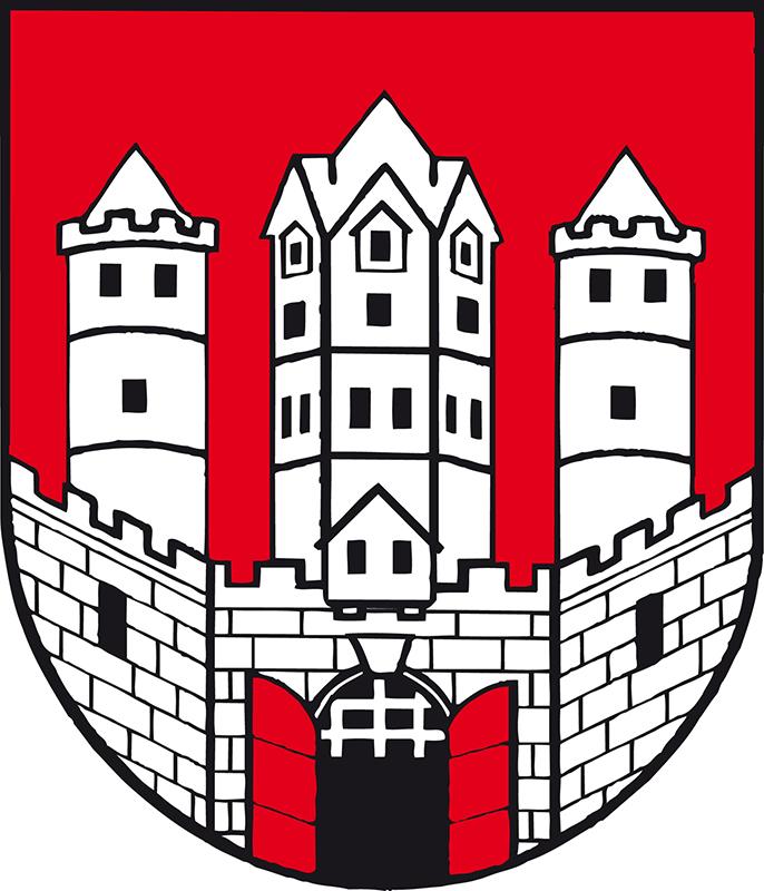 ザルツブルク音楽祭パブリックビューイング・プレイベント         「オーストリアな1日」