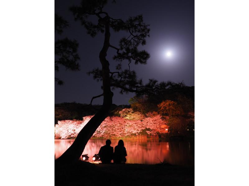 (横浜市中区・三溪園)[観桜(かんおう)の夕べ]