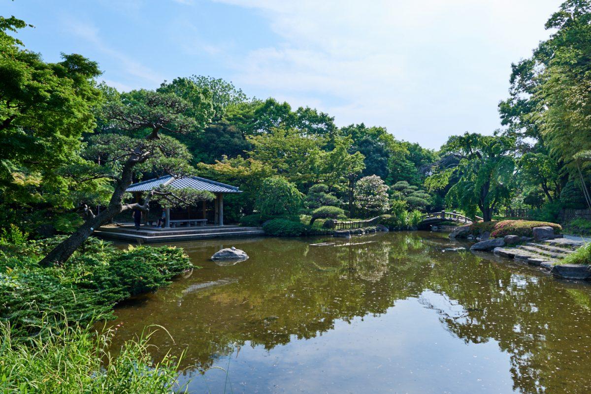 【平塚市総合公園】アクティブな公園の中で、ひっそりと日本情緒を愉しむ