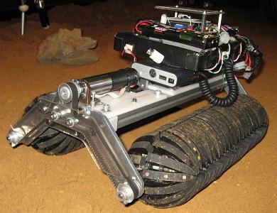 夏休み特別企画「自由研究ラボ~宿題だって楽しみたい!~」 博士と話そう!「多田隈博士がやってくる!見てみよう!未来のロボット!」