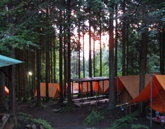 足柄森林公園 丸太の森