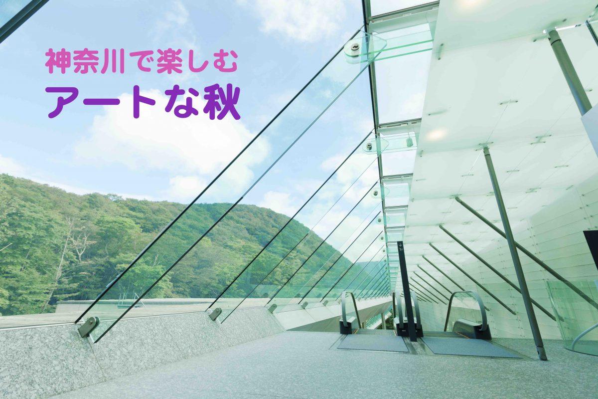 神奈川で楽しむ、アート&カルチャーな体験プレゼント!