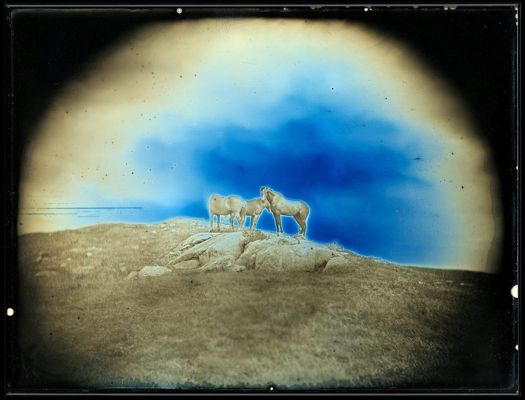 【d】  大人のためのアトリエ「写真が〈魔術〉だったころー最初期の写真・ダゲレオタイプ(銀板写真)講座+映像詩『オシラ鏡』上映会」