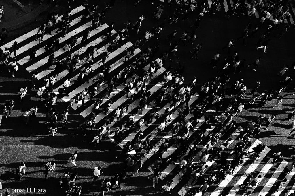 【d】  写真家Tomas H. Hara氏と「ストリートフォトグラフィー」を考えるセミナー開催