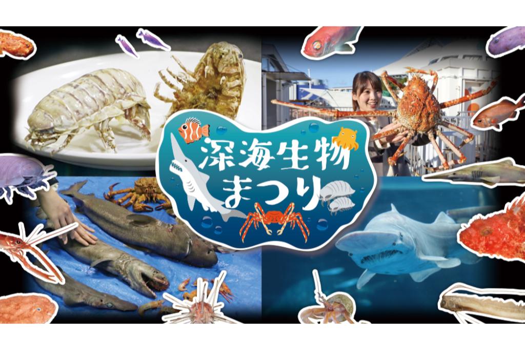 見て、さわって、知って、味わう、深海生物を五感体感してみよう!
