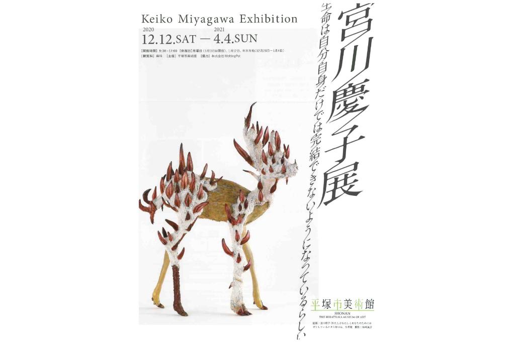 美術作家・宮川慶子の剥製や石塑粘土を素材とした作品を展示
